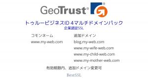 GeoTrust トゥルービジネスID 4マルチドメインパック