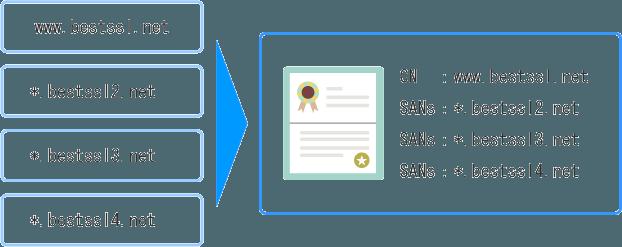 マルチドメイン ワイルドカードSSL証明書とは?